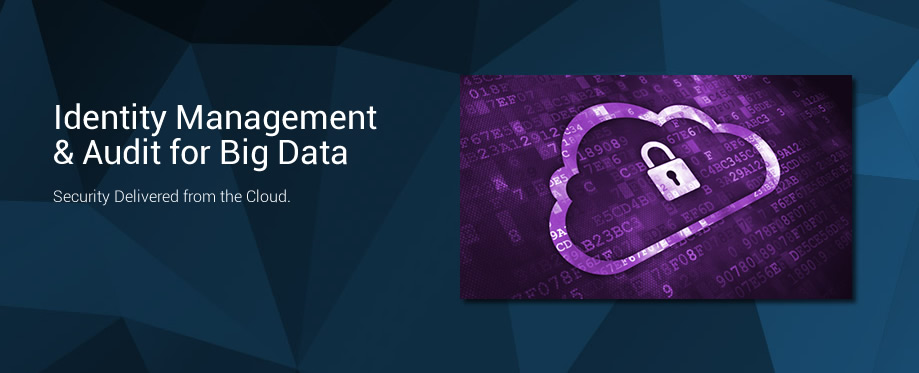 Identity Management and Audit for Big Data